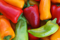Red, orange, yellow, green peppers Stock Photo