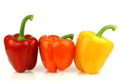 Red, orange and yellow paprika(capsicum) Royalty Free Stock Photo