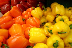 Red, Orange, and Yellow Peppers Stock Photo