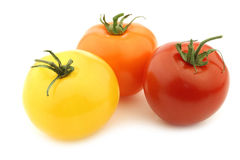 Red, orange and yellow tomatoes Royalty Free Stock Photos