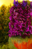Red orchid flower arrangement Royalty Free Stock Photos