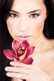 Red orchid in hands Stock Images