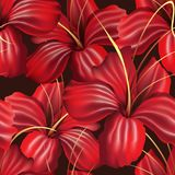 Red Orchid Seamless Pattern. Red Orchid Flowers Seamless Pattern on Black. Vector illustration Stock Photography