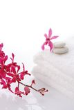 Red orchid with towel Royalty Free Stock Photos