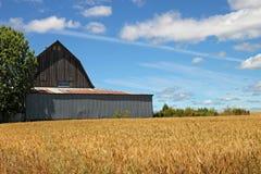 Red Oregon Barn Royalty Free Stock Photos