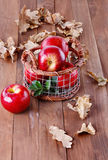 Red organic apples in a metal basket on wooden background. Healthy organic red apples in a metal basket and fall leaves on a wooden background royalty free stock photos