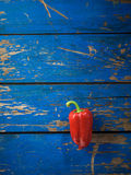 Red organic pepper Stock Photography