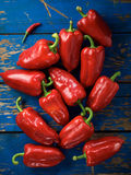 Red organic pepper Royalty Free Stock Image