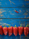 Red organic pepper Stock Images