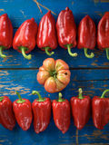 Red organic pepper and tomato Stock Images