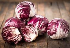 Free Red Organic Radicchio Stock Images - 108536474