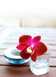 Red oriental orchid in glass container with aromat. Single red oriental orchid in glass container with aromatherapy candle, part of health and alternative stock photo