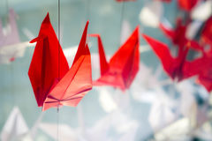 Red origami bird Royalty Free Stock Image