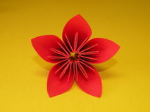 Red origami flower. Isolated on yellow, kusudama royalty free stock photo