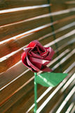 Red Origami Rose Royalty Free Stock Image