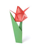 Red origami tulip over white Royalty Free Stock Images