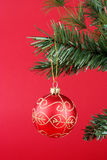 Red Ornamant. Christmas tree branch on a red background with red ball hanging from it Royalty Free Stock Photos