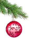 Red ornament christmas ball in a fir tree Royalty Free Stock Photos