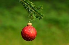 Red ornament christmas ball Stock Image