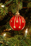 Red ornament in Christmas tree Royalty Free Stock Photo
