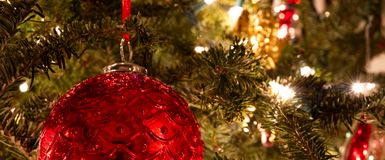 A red ball ornament hanging on a lit Christmas tree. stock images