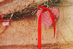 Red ornament in the shape of a heart hanging on a branch Stock Photos