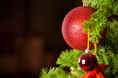 Red ornaments on Christmas tree against dark background Stock Photos