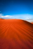 Animal tracks in red sand dune Royalty Free Stock Photography