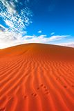 Animal tracks in red sand dune Stock Photos