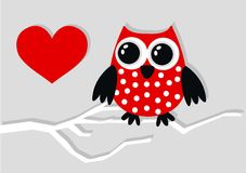 Red owl Royalty Free Stock Photography