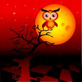 Red owl. Halloween spooky moon with owl on a branch and dark red sky Royalty Free Stock Image