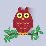 Red Owl Sitting on a Branch Royalty Free Stock Images