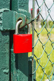 Red padlock on the green gate Stock Photos