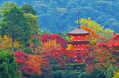 Red Pagoda in Kizyomizu Stock Image
