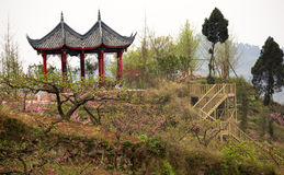 Red Pagoda Peach Orchard Sichuan China royalty free stock photo