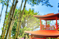 Red pagoda roof in oriental garden. At summertime royalty free stock photography