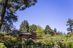 Red pagoda and trees in a japanese garden Royalty Free Stock Photo
