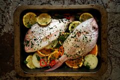 Red pagrus fish ready to be cooked in the oven Stock Photos