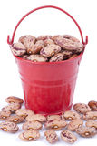 Red pail with beans Stock Images