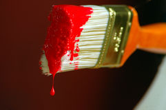 Red Paint. Paint brush shallow depth of field red paint with drip Stock Image