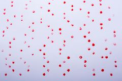 Red paint dots on a white background. On display stock images