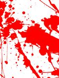 Red Paint Drips and splash on White background. Red Paint Drips and splash on White isolate background. vertical royalty free stock images