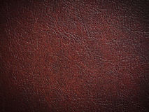 Free Red Paint Leather Royalty Free Stock Photos - 19766648