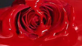 Red paint lipstick liquid texture, oil paint for painting, mixing shades, art make up cosmetic for face rose flower blossom.