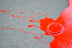 Red paint puddle. A spilled can of red colored paint Stock Photography