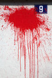 Red paint splash on a white wall Royalty Free Stock Images