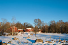 Red painted Swedish wooden houses in a wintry landscape. A couple of typical red painted wooden houses in a wintry landscape near the village Valåkra in Små Stock Photography