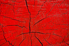 Red painted tree trunk background Stock Photos