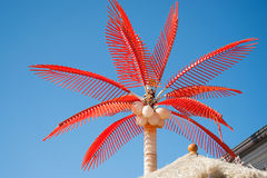 Red palm tree Royalty Free Stock Image