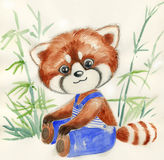 Red panda and bamboo, watercolor for children Stock Photos
